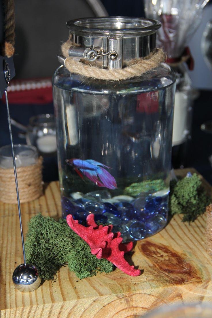 The 25 best beta fish centerpiece ideas on pinterest for Beta fish centerpiece