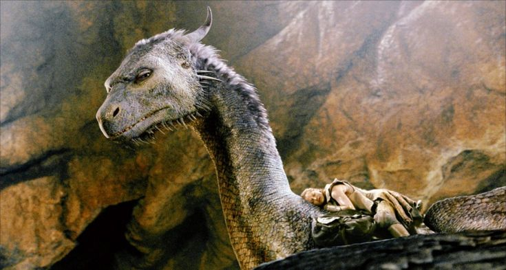dragon riders eragon - Google Search