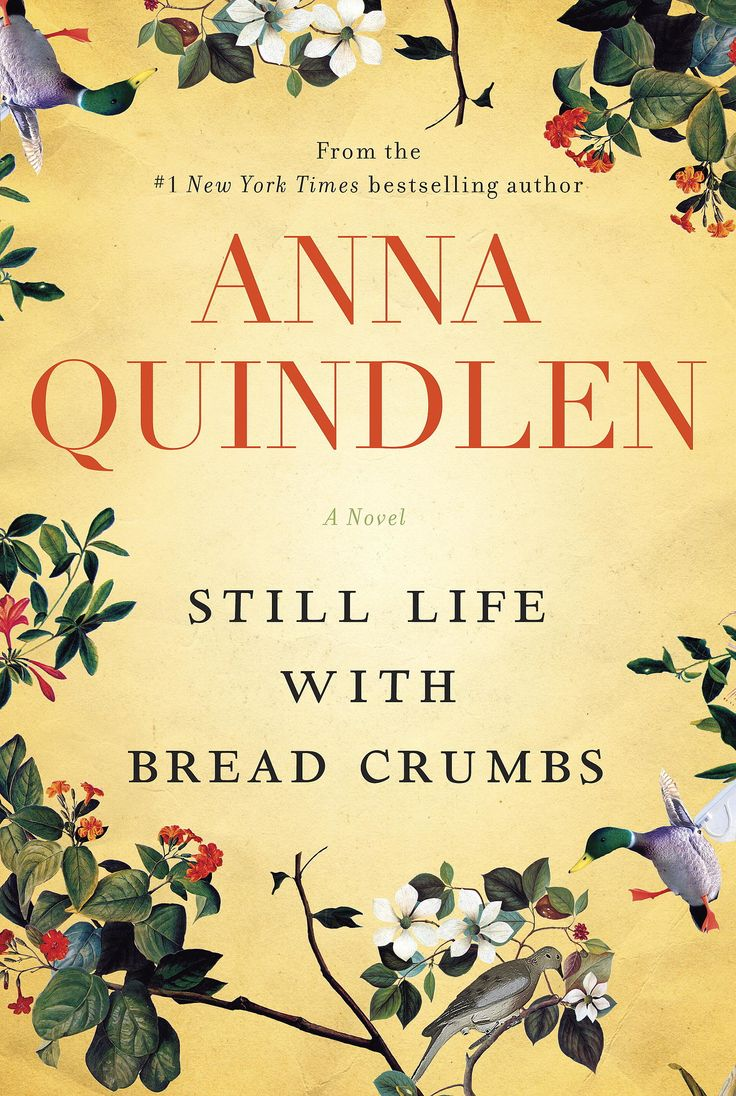 Anna Quindlen's novel Still Life With Bread Crumbs tells the unlikely love story between a photographer reevaluting her life and the roofer she meets along the way.