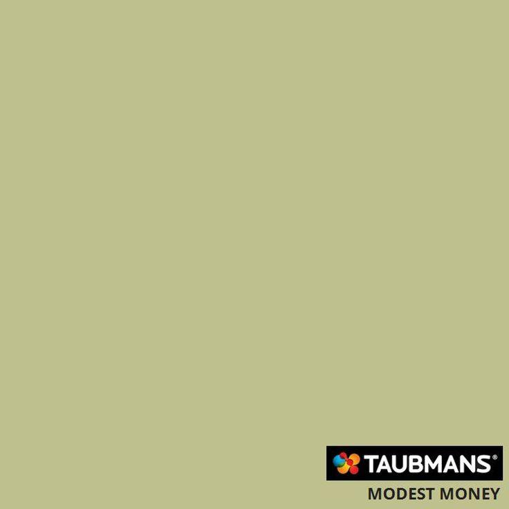 #Taubmanscolour #modestmoney