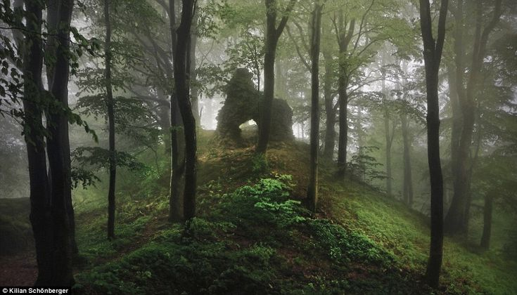 Fairytale: The remains of Castle Frauenstein, Germany. The castle was first recorded by name in 1272 and was built as a border fortification