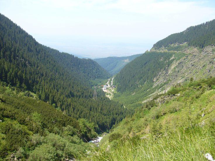 Fogarasi-havasok: szerpentinek, fenyvesek, hegyi patakok.