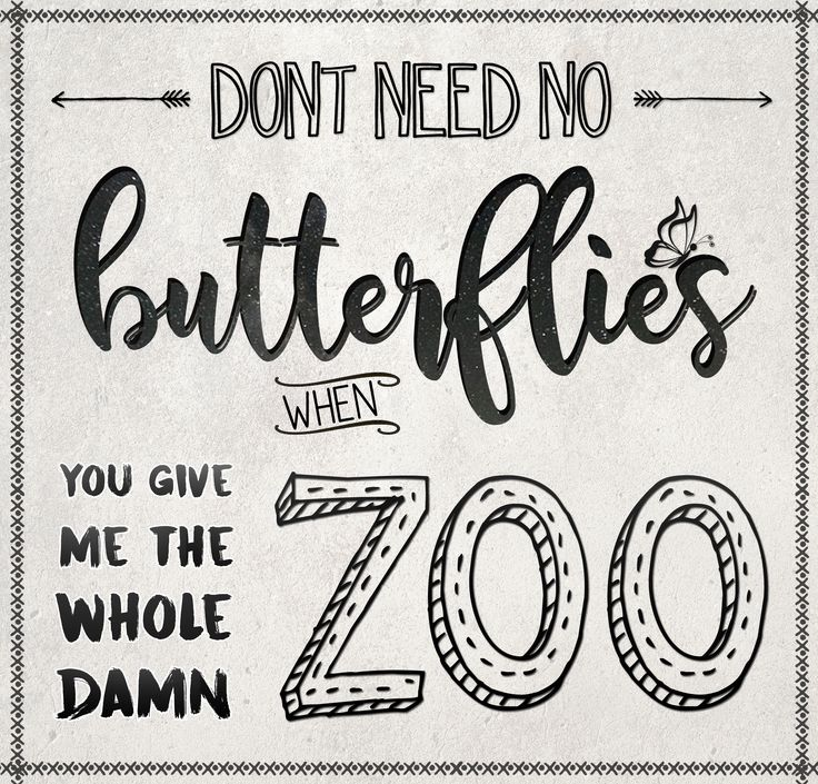 """Don't need no butterflies when you give me the whole damn zoo"" - Starving by Hailee Steinfeld"