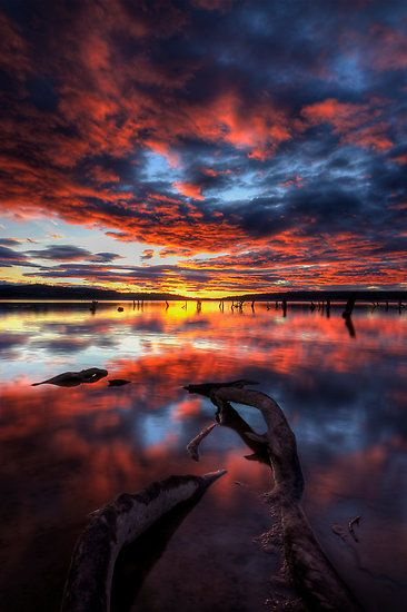 ~~Another Day in the Office ~ Lake Glenmaggie, Victoria, Australia by Alex Stojan~~
