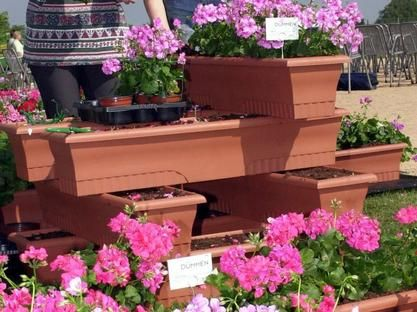 Superb Blumenk sten richtig bepflanzen