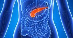 Týchto 8 potravín lieči pankreas a obnovuje enzýmy chrániace pred rakovinou