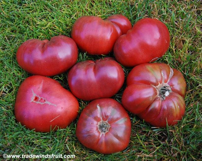 45 Best Beautiful Amp Tasty Heirloom Tomatoes Images On