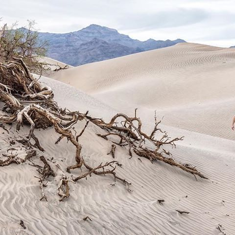 What is best idea for an engagement shoot. Make it EPIC! Create some once in a life time images that will be fine art for the walls of your home. This image was taken in Death Valley National Park. #deathvalley #deathvalleynationalpark