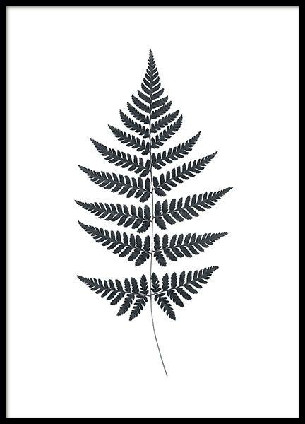 Print met zwart-witte varen. Poster met stijlvol motief die mooi is voor in huis of op kantoor. Mooi en interessant detail in een posterwand samen met andere posters. www.desenio.nl