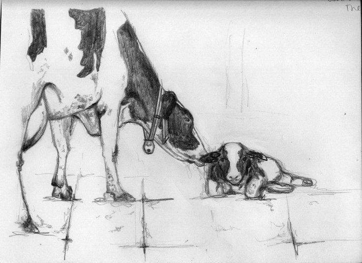 #vaca #cow #ilustracion #blancoynegro #milagalarreta #animaleando