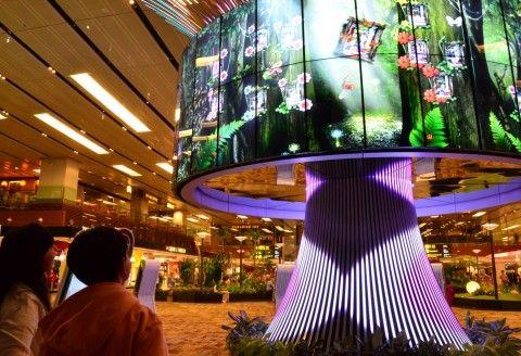 Social Tree - Changi Airport