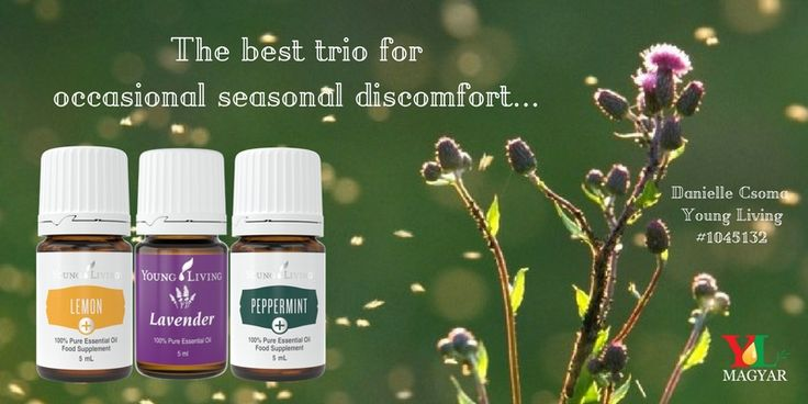 Our family likes to take 1-2 drops of Lavender and apply around the eyes and on the throat (dilute with Young Living V6, if needed).  We also like to place a few drops of Lemon + and Peppermint + in a vegetable capsule or in our water.