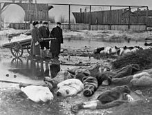 1942 - Three men burying victims of Leningrad's siege.  The Siege of Leningrad lasted 872 days, September 8, 1941- January 27,1944, resulted in the deaths of up to 1,500,000 soldiers and civilians and the evacuation of 1,400,000 more, mainly women and children, many of whom died during evacuation due to starvation and bombardment.
