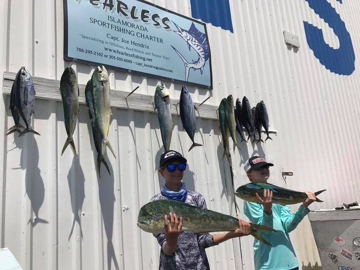Fearless Fishing Report for May 31 (#Islamorada, FL): Today we fished a full day and we had great action with the #Mahi and Blackfin #Tuna #Offshore. We found a good school of mahi to start and then picked away. The #Hump was holding the football size Tunas today. Wind was southeast at 12 knots. Seas 1 to 3 feet #fearless #fishing #charter #conch27 #captjoehendrix