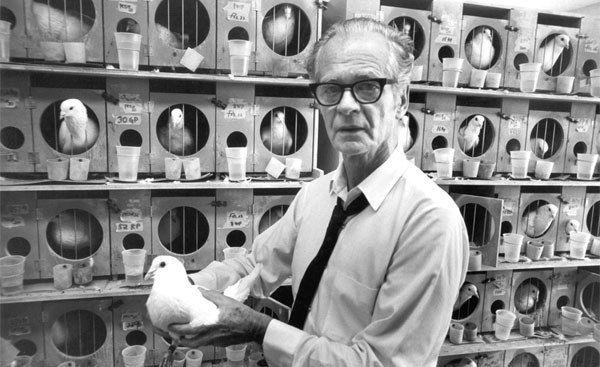 Skinner materializó la demostración de la ley del reforzamiento instaurando el proceso de condicionamiento operante con la jaula diseñada por él mismo.