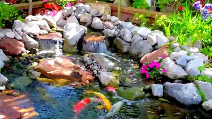 17 best images about koi pond and koi fish on pinterest for Beautiful koi ponds