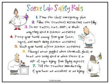25+ best ideas about Science safety rules on Pinterest | Science ...