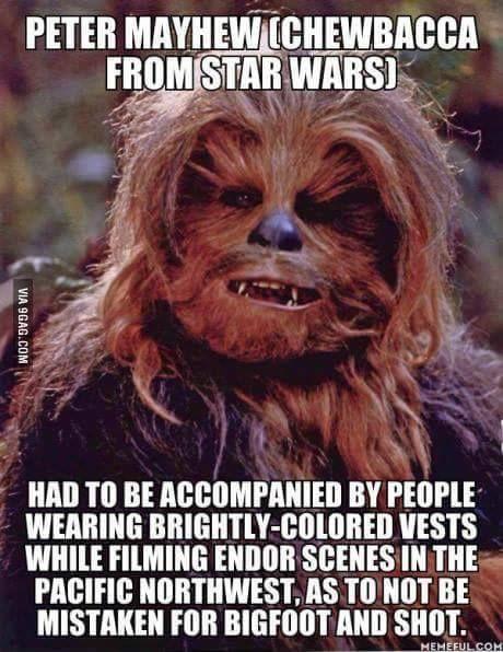 The making of Star Wars: Insider Info