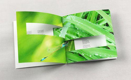 35 Awe-Inspiring Booklet Designs for Print Design Inspiration - You The Designer