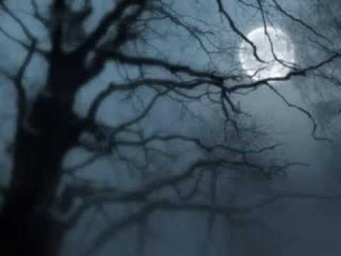 Beethoven - silence (Stille) - YouTube