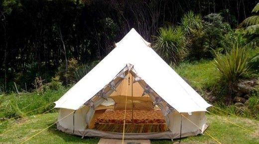 Kowhai Camping, Great Barrier Island, Hauraki Gulf, New Zealand