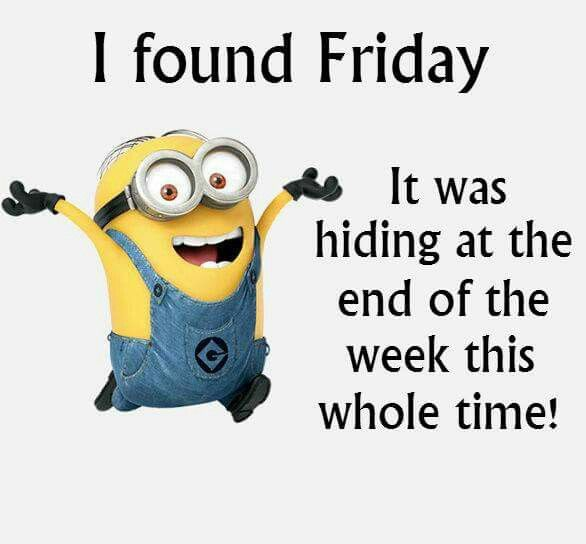 Ih that silly Friday                                                                                                                                                                                 More