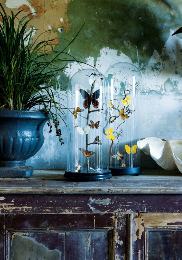 butterflies in a bell jar...note to self.. Use dried acrylic paint to make butterfly wings