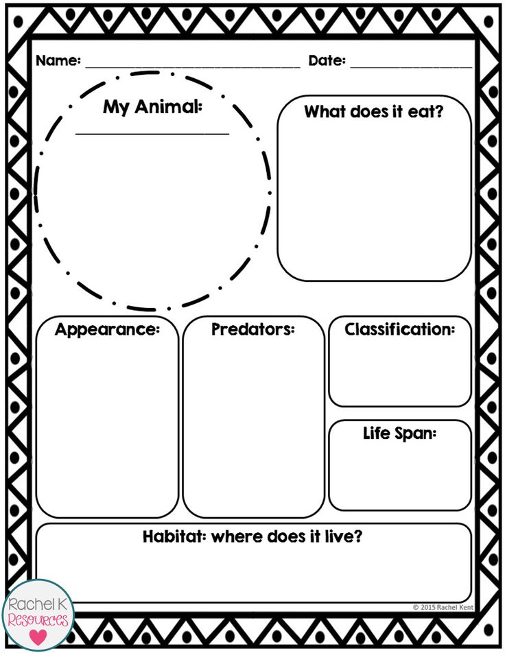 Animal Report Template | Animal report template, Animal ...