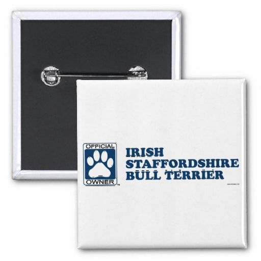Irish Staffordshire Bull Terrier Blue Button