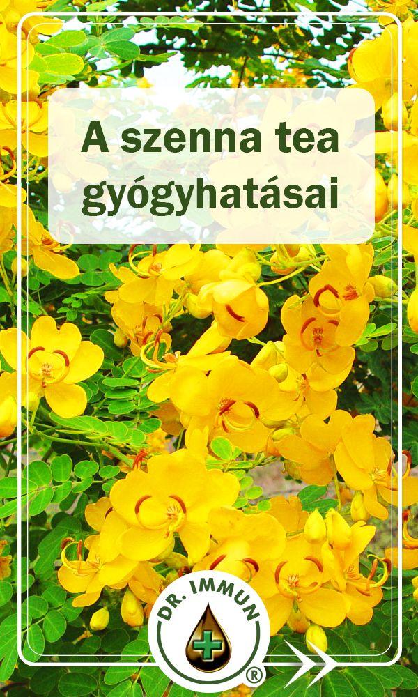 sárga tea fogyás