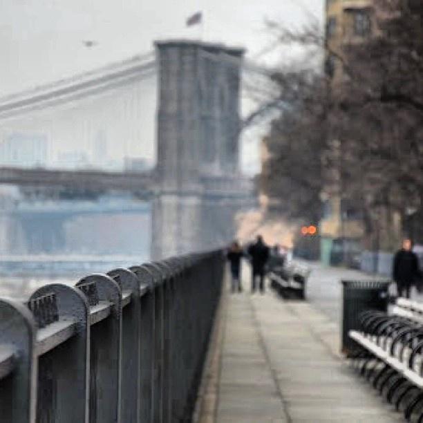 #Brooklyn  #heights  #bridge  #NY  #NYC  #travel  #promenade  #Brooklyn  #heights  #bridge  #NY  #NYC  #travel  #promenade