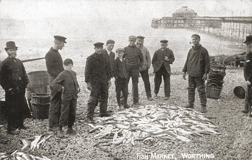 Fishermen with their catch on the beach, Worthing. A group of fishermen wearing working clothes and caps stand around their catch of fish displayed on the pebbles. One man smokes a pipe. Two young boys stand in the group. Baskets on beach. Worthing pier with south pavilion in background. Terry Child Collection. Young Ones Project. ImageDate c1900