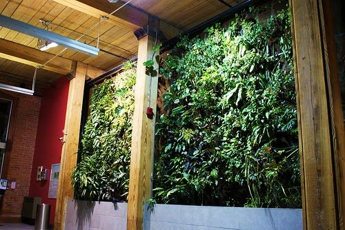 """Living Wall""  by Intrepidacious   Today on Twitter, Debby ( @torvaanser ) of Pulau Hantu Blog  posted a question: ""What do u think abt bio..."