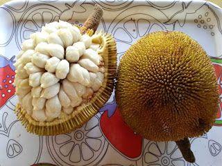 Marang Fruit pictures