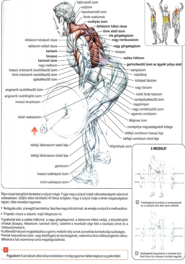 Prosztata hiperplázia étrend