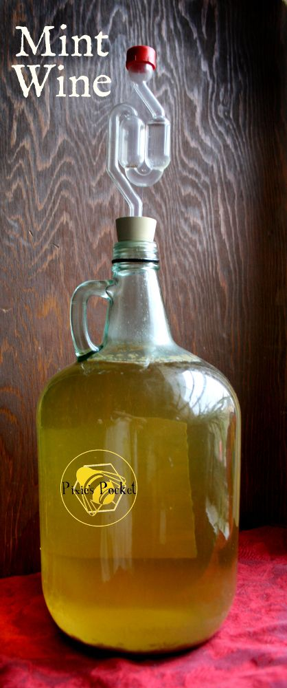 What can I make with mint? Mint wine ends up with an amazing, unexpected flavor. It does not taste like mint tea. This batch ended up rather like a sweet chardonnay!