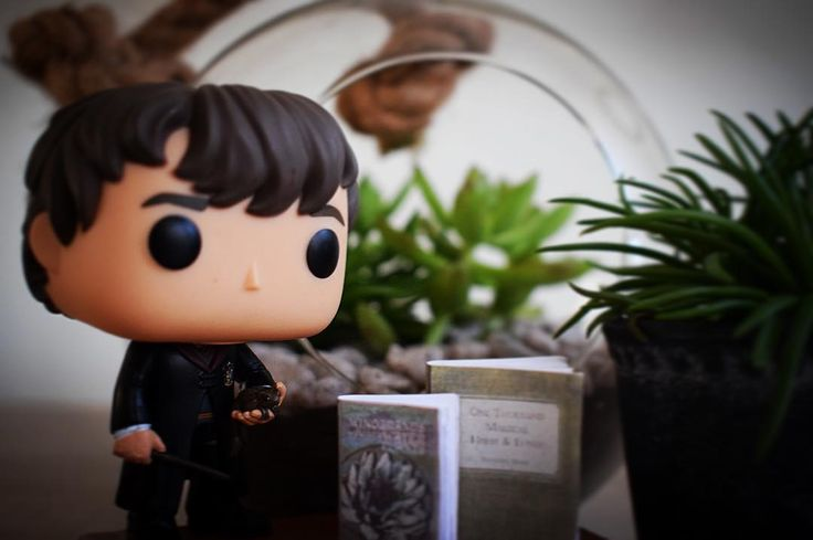 Just reading this book Professor Moody lent me He held up the book; Magical Mediterranean Water-Plants and Their Properties. Apparently Professor Sprout told Professor Moody Im really good at Herbology Neville said. - #harrypotter #potterhead #harrypotterforever #funkopop #funkopops #toyphotography #funkophotography #hogwarts #gryffindor #slytherin #hufflepuff #ravenclaw #muggles #wizard #witch #popvinyl #harrypotterfunko #funkoaddict #neville #nevillelongbottom