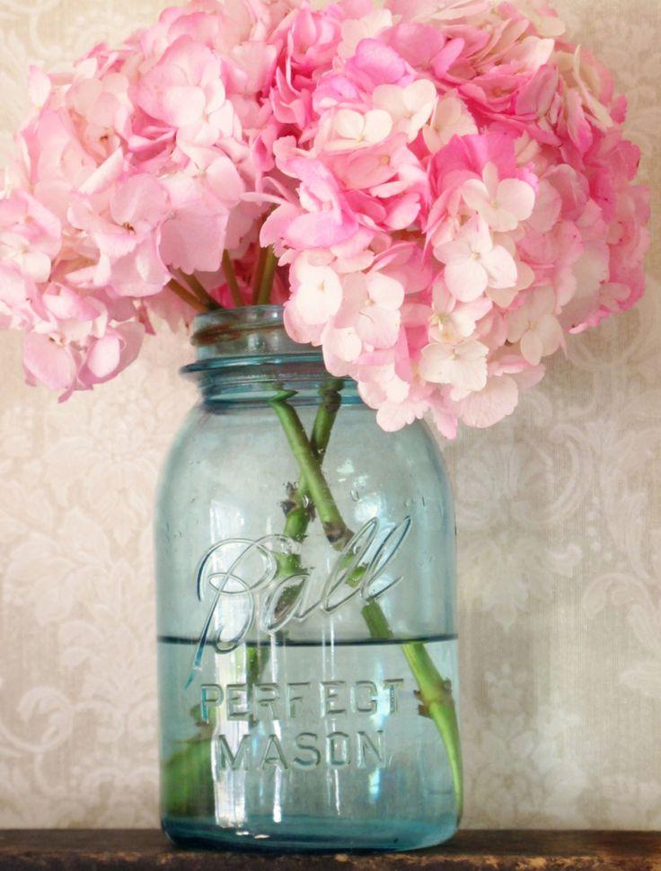 Simple bouquet idea: pink mophead hydrangea in blue mason jars.