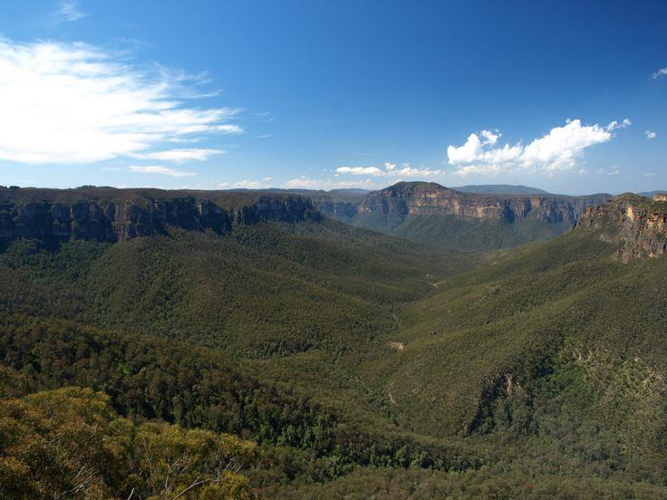 La brume bleutée des Blue Mountains, non loin de #Sydney. #Australie