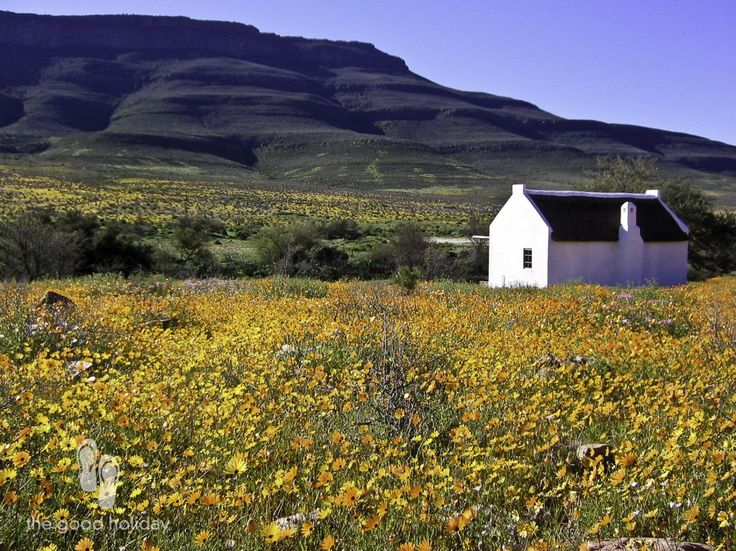 Enjo Nature Farm is one of those extraordinary places, where time seemingly goes much slower than in cities, such as Cape Town