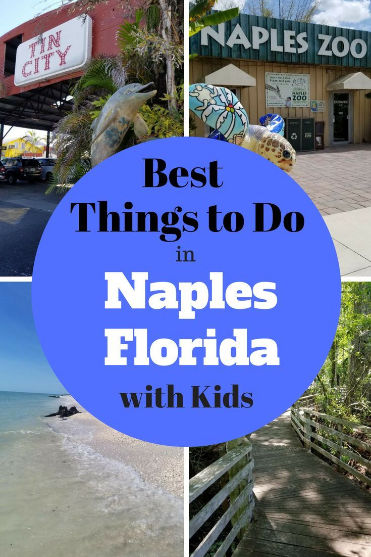 Fun Things To Do Attractions In Naples Florida With Kids Happy Mom Hacks Naples Florida Naples Zoo Florida