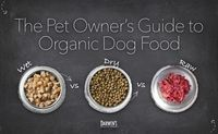 Organic Dog Food Guide by Darwin's Natural Pet Products