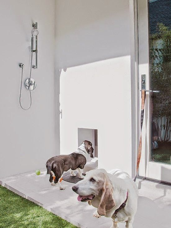 21 Best Pet Washing Stations Indoors Outdoors Images On