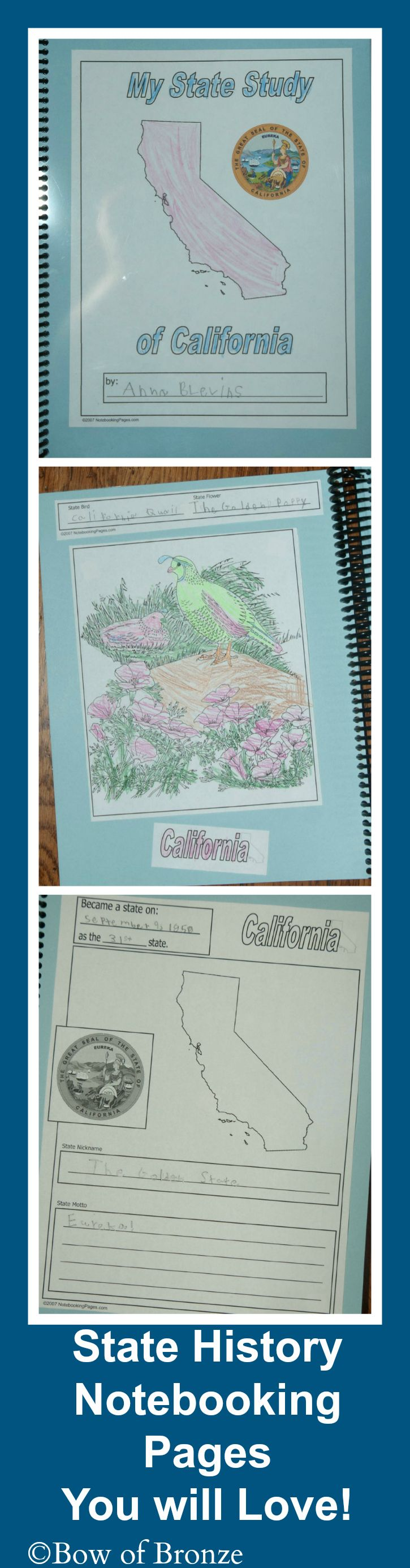 These beautiful State Notebooking Pages were the