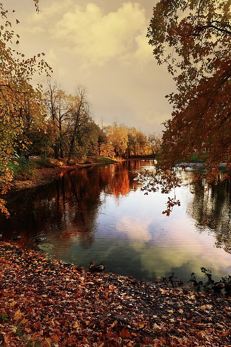 George Westermak Photograph - a quiet evening in a city Park painted in bright colors of autumn by George Westermak #GeorgeWestermakFineArtPhotography #ArtForHome #FineArtPrints #autumn #Russia