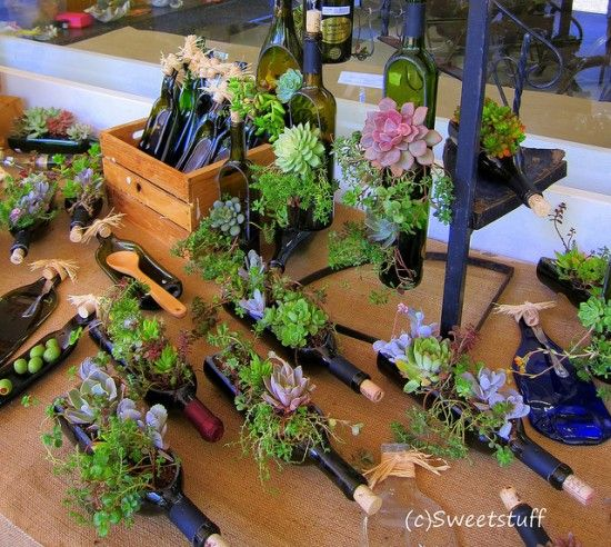 Succulent Wine Bottle Planters are a fun and natural decoration option. Learn how to make them here!