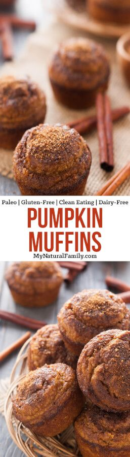 "Pumpkin Muffins Recipe {Paleo, Gluten-Free, Clean Eating, Dairy-Free} - These have 3 different Paleo ""flours,"" which makes it so you can't taste any one flour. I definitely need to make these again!"