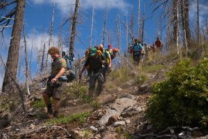 Timber Company Says It Will Clearcut If It Buys Public Forestland . News | OPB