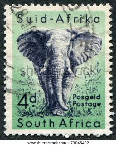 stock photo : SOUTH AFRICA-CIRCA 1954: A stamp printed in the South Africa, depicts animals from Kruger National Park, the African Elephant, circa 1954