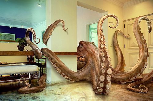 Octopus will take over the world.